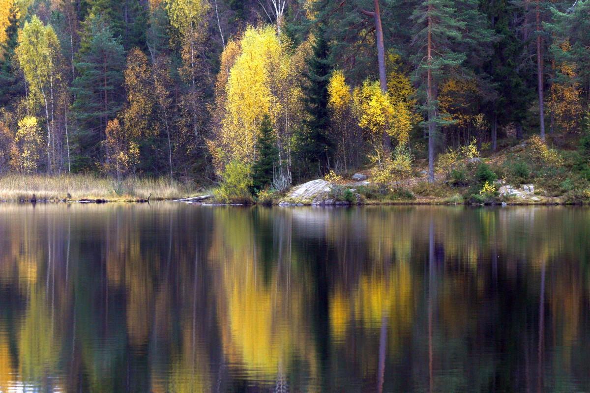 Jesienne Oslo