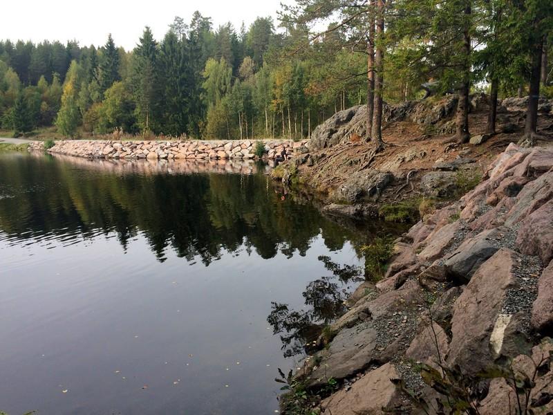 Brunkollen w Bærumsmarka