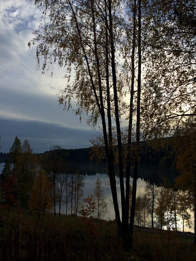 Piękna norweska jesień w Nordmarce