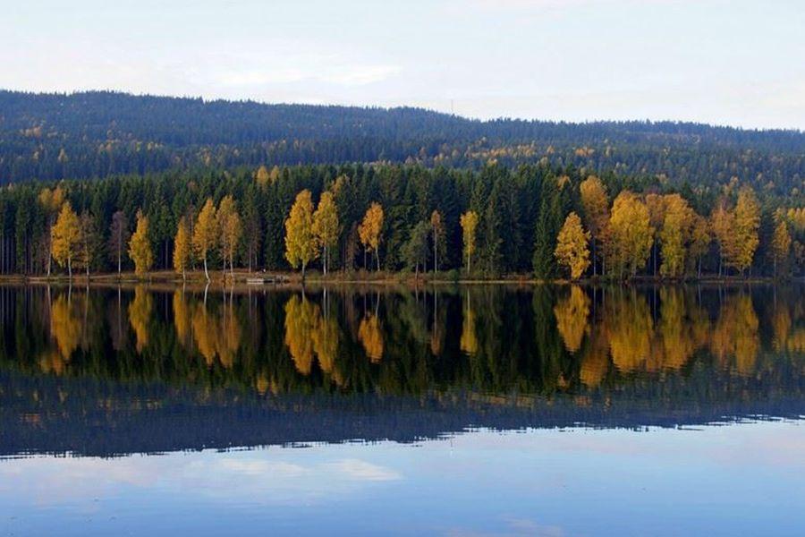 Piękna norweska jesieńn