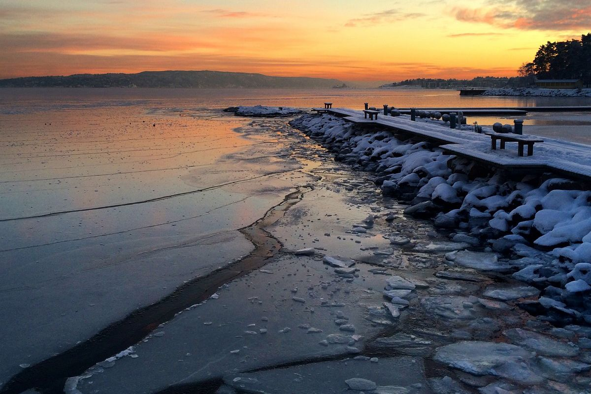 27 stycznia 2014. Lysaker. Norwegia