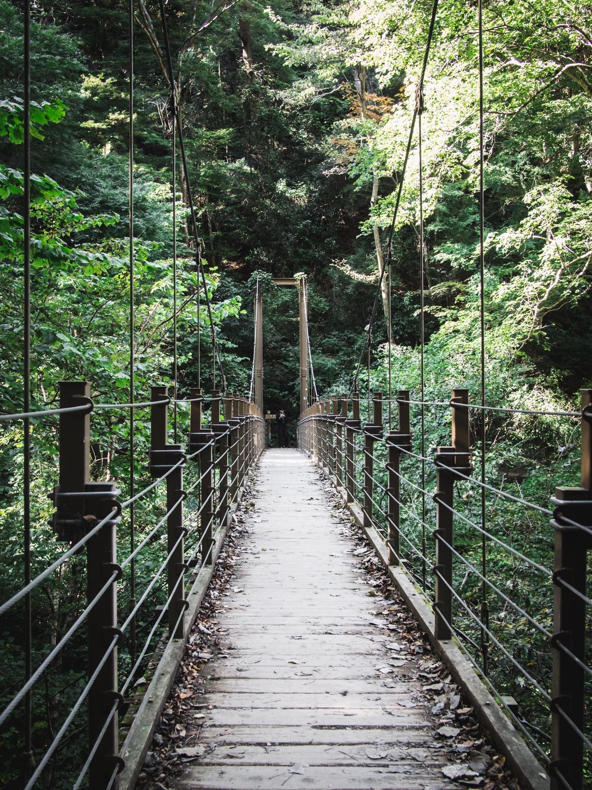 Takao, Japonia