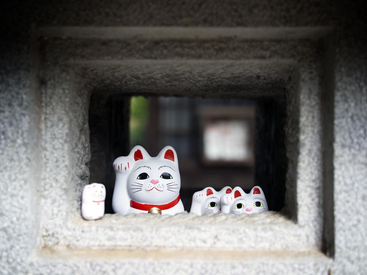 Kocie świątynie i chramy w Japonii- Gōtoku-ji