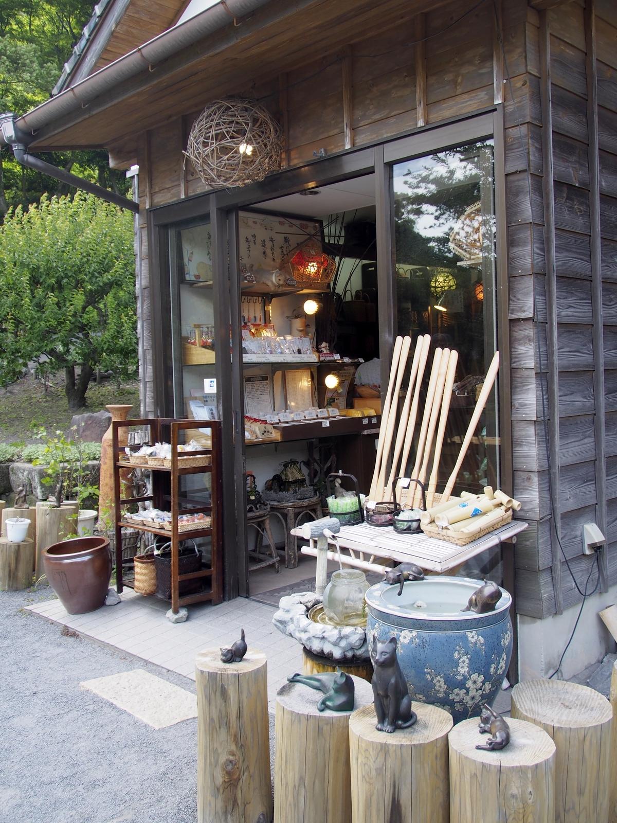 Kocie świątynie i chramy w Japonii - Nekogami Jinja