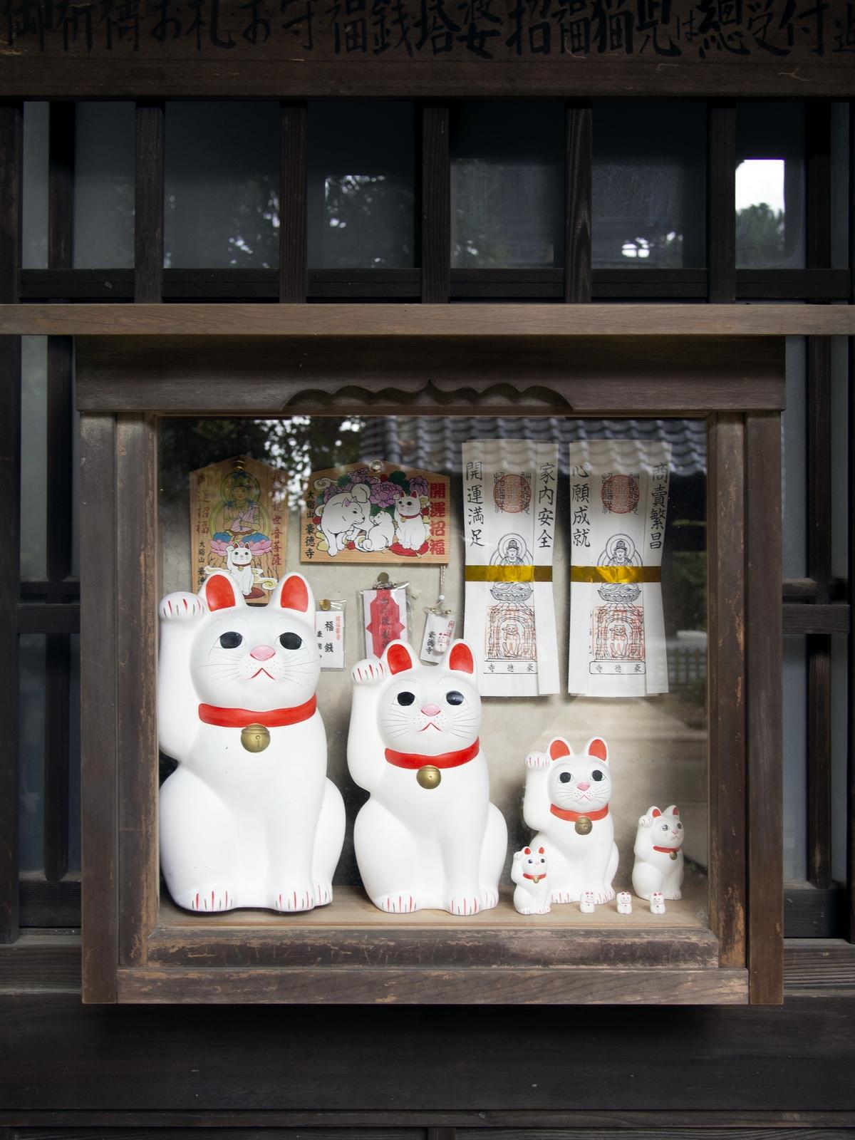 Kocie świątynie i chramy w Japonii - Gōtoku-ji